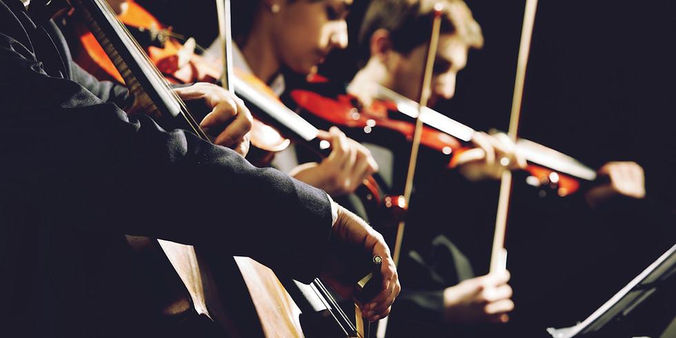 RVSD Orchestra Concert