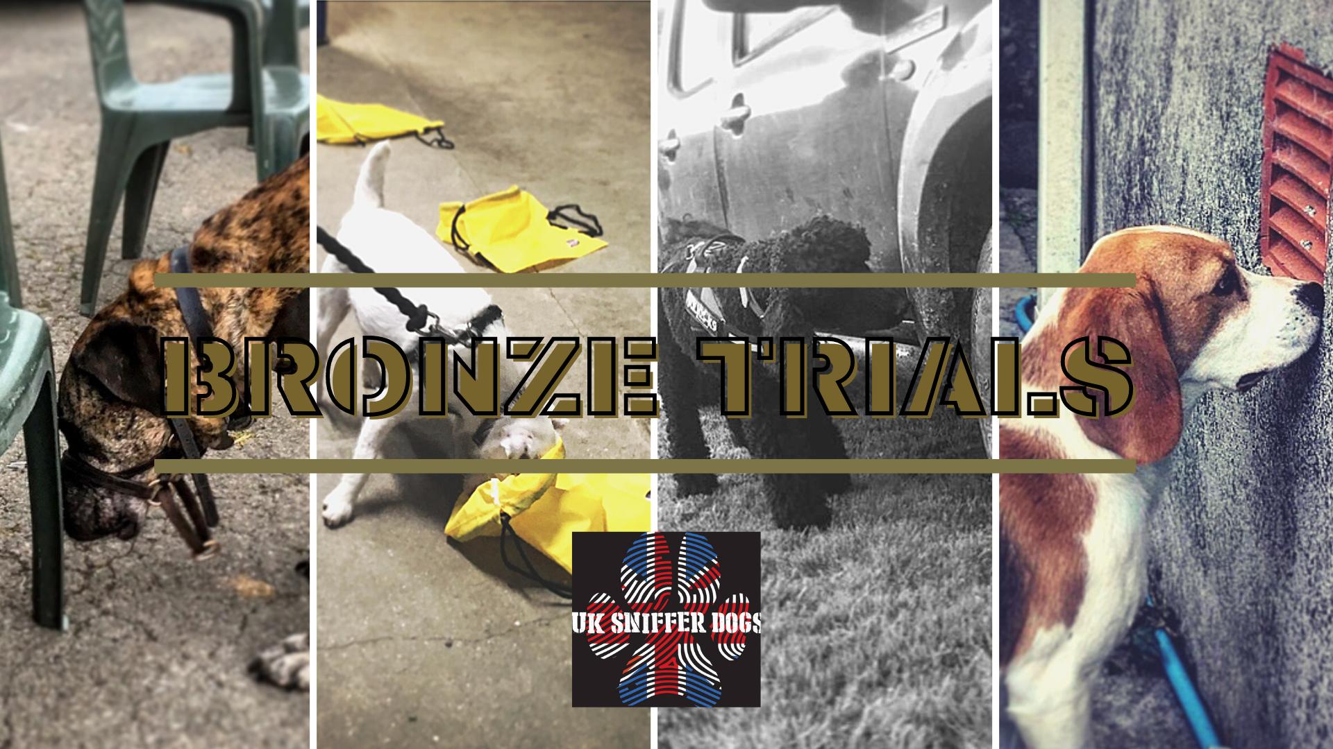 UK Sniffer Dogs - Bronze Trials