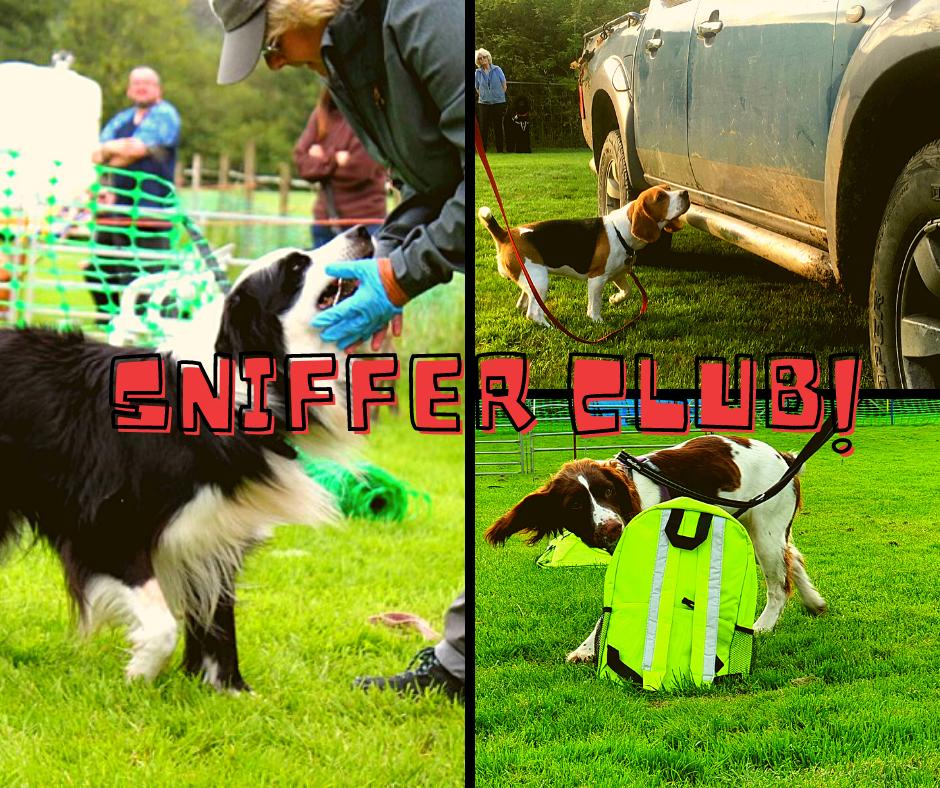 ClickStart Sniffer Club