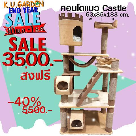 Castle 3500.jpg