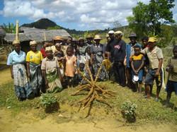 Manioc 1 septembre 2012