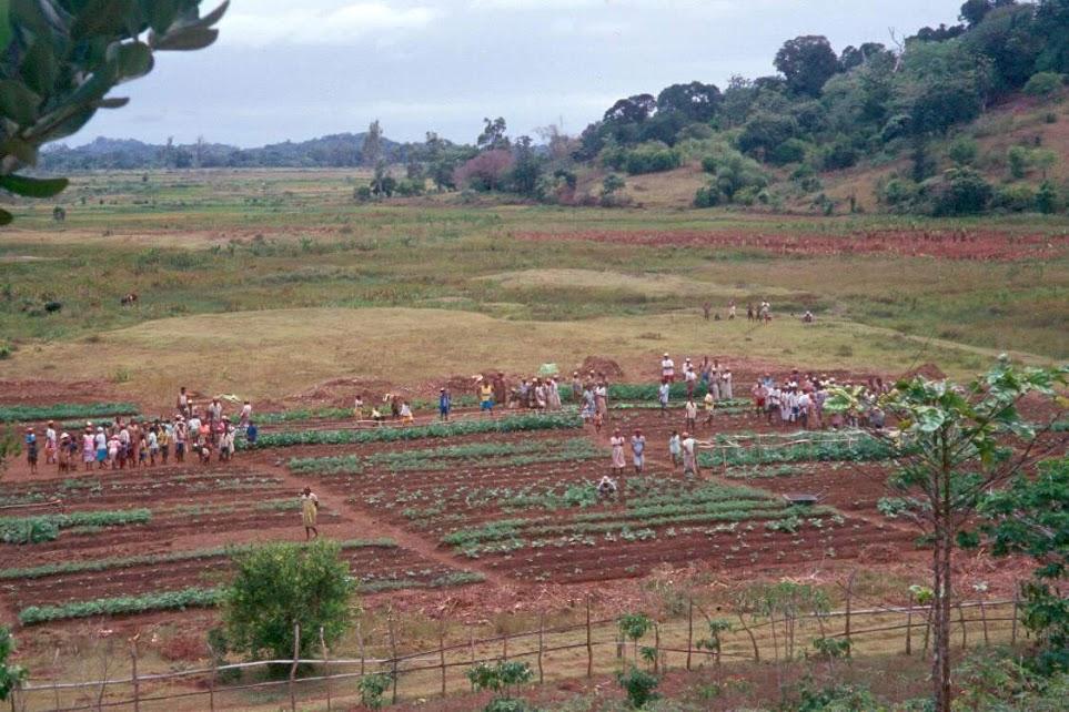 Jardin d'Ifatsy depuis le village