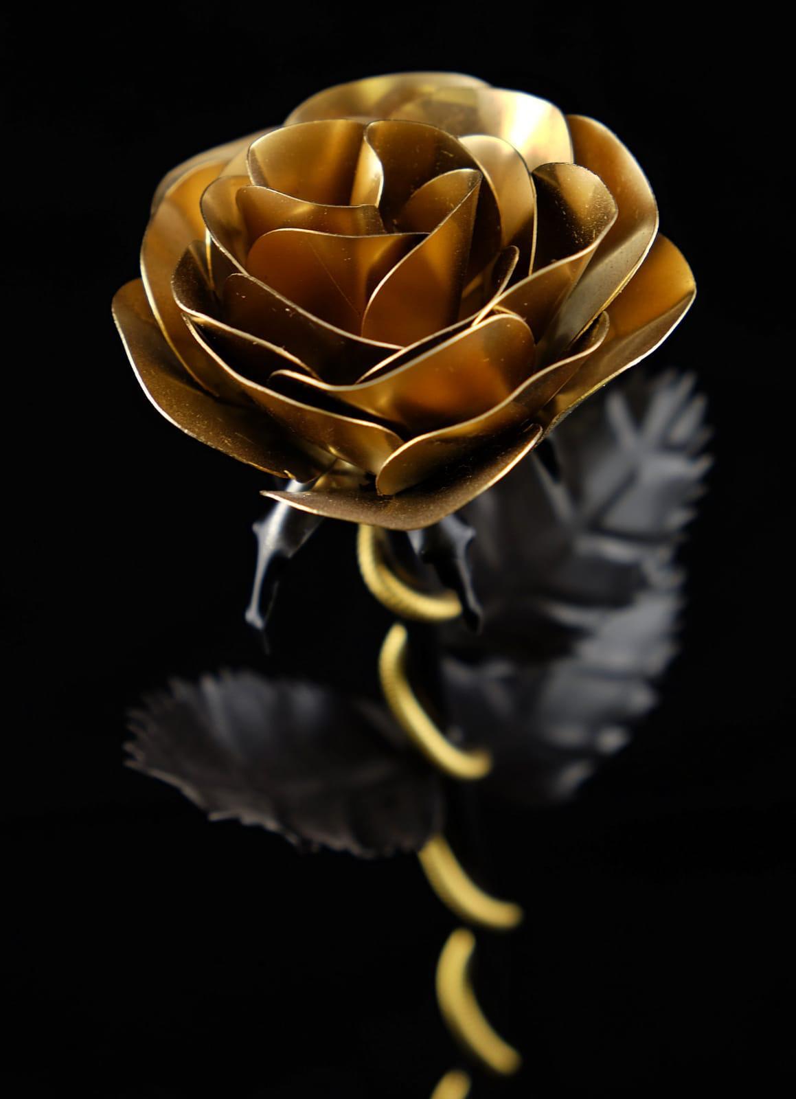 Pr Schwarz Gold
