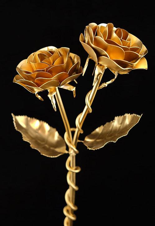 Doppelpack Klassiker Gold