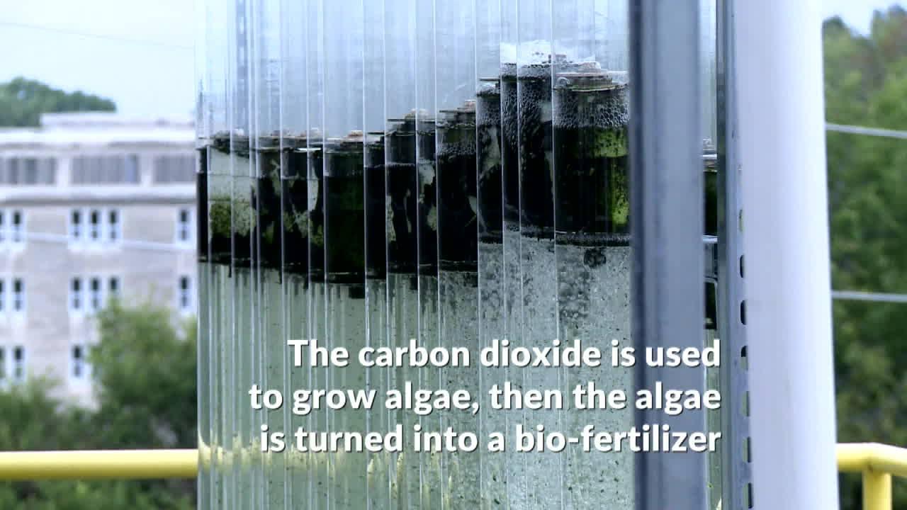 IU Converts Greenhouse Gas Into Fertilizer