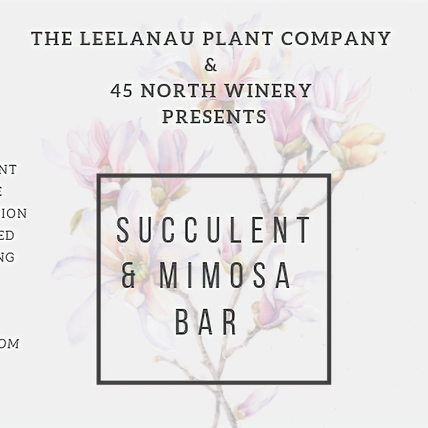 Mother's Day 45 North Winery Succulent & Mimosa Bar