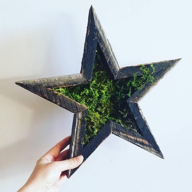 Barnwood Star