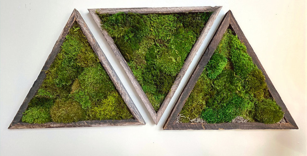 Moss Triangle Play Series