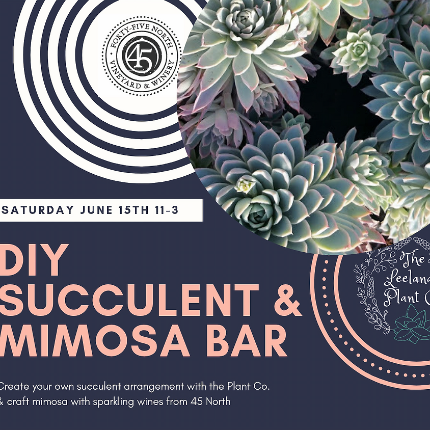 45 North Winery Succulent & Mimosa Bar