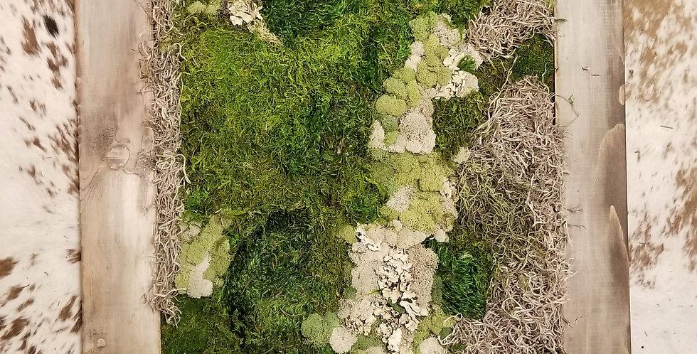 Custom Moss Art
