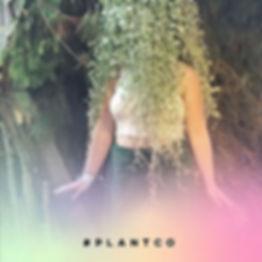 🦄🔮🌿_._._._#plantco #design #floral #a