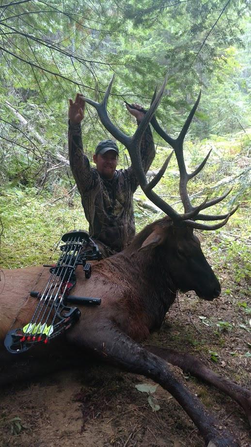 Guide Elk bow hunt