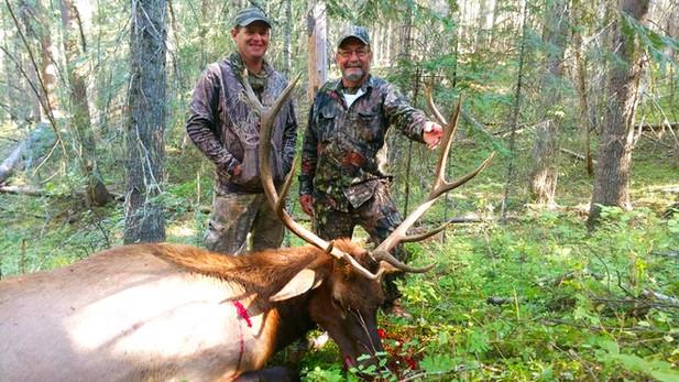 Elk and Deer Combo Bow