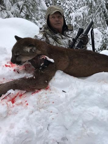 Winter lion hunt