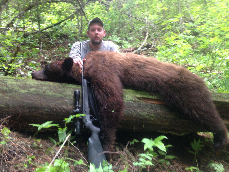 Spring rifle bear hunt