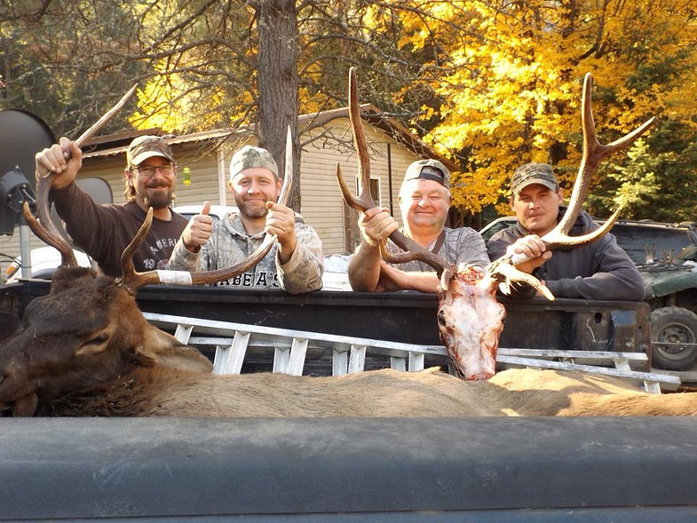 Guided Elk Hunt