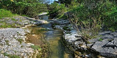stream-3645734_1920.jpg