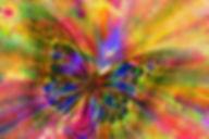 papillon toile.jpg
