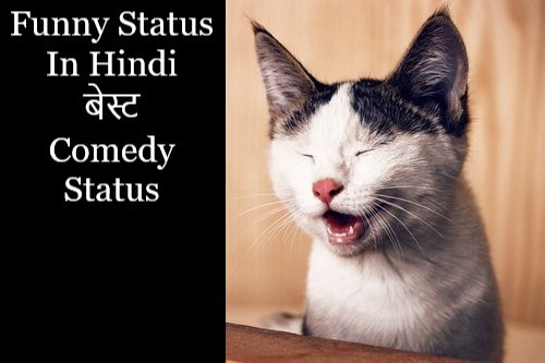 about-funny-status-for-whatsapp-in-hindi-comedy-status