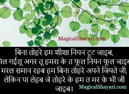 Bina Tohare Hum Sheesha Niyan, Bhojpuri Shayari