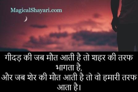 royal-attitude-status-in-hindi-gidad-ki-jab-maut-aati-hai-shehar-ki-taraf