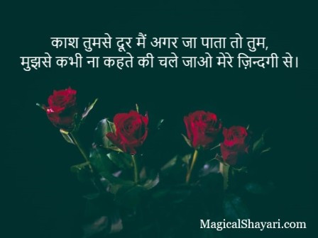 2-line-shayari-status-in-hindi-kaash-tumse-door-main-agar-ja-pata