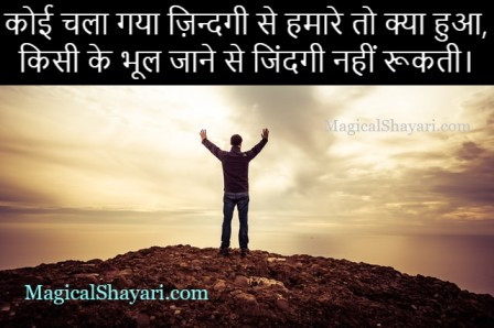 shayari-happiness-status-hindi-koi-chala-gaya-zindagi-se-hamare-to-kya-hua