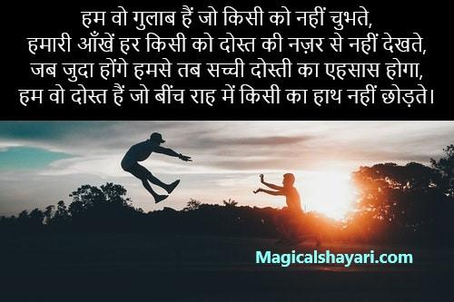 hum-wo-gulab-hain-jo-kisi-ko-nahi-chubhte-dosti-shayari