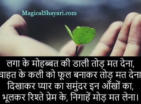 Laga Ke Mohabbat Ki Dali Tod Mat, Mohabbat Shayari In Hindi