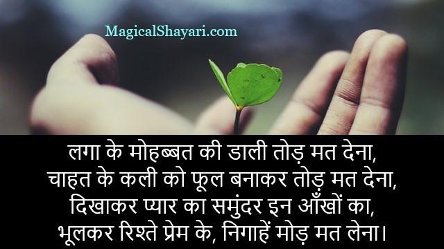 mohabbat-shayari-in-hindi-laga-ke-mohabbat-ki-daali-tod-mat