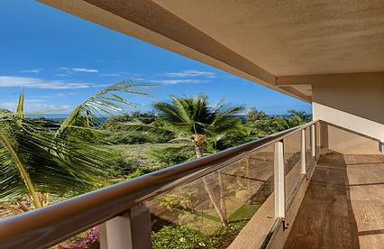 Maui Banyan H5051.png
