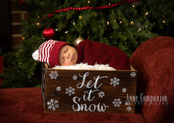 Newborn photographer Newport News