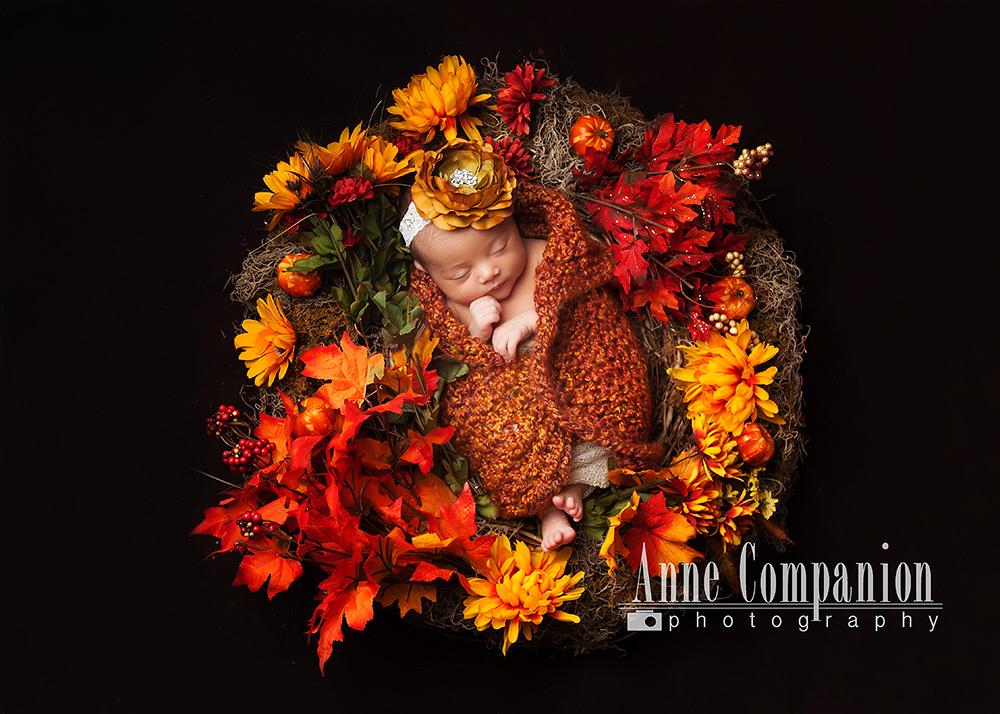 Newborn portraits HamptonVa