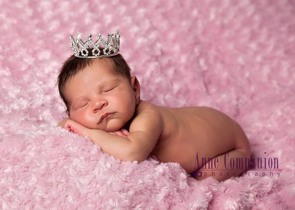 Newborn pictures Hampton Va