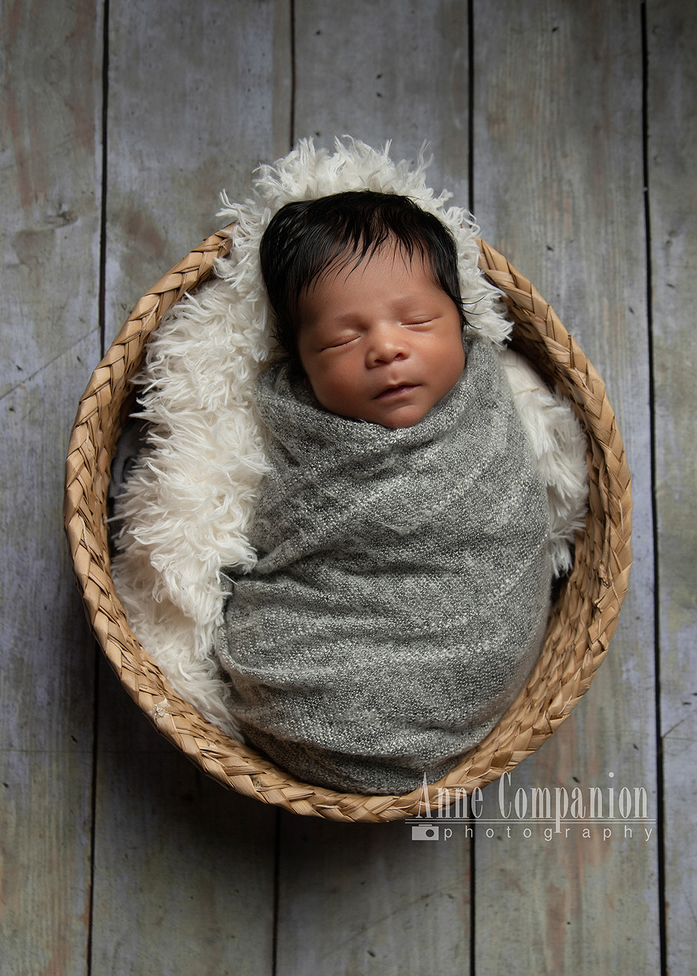 Newborn photographer near Williamsburg Va