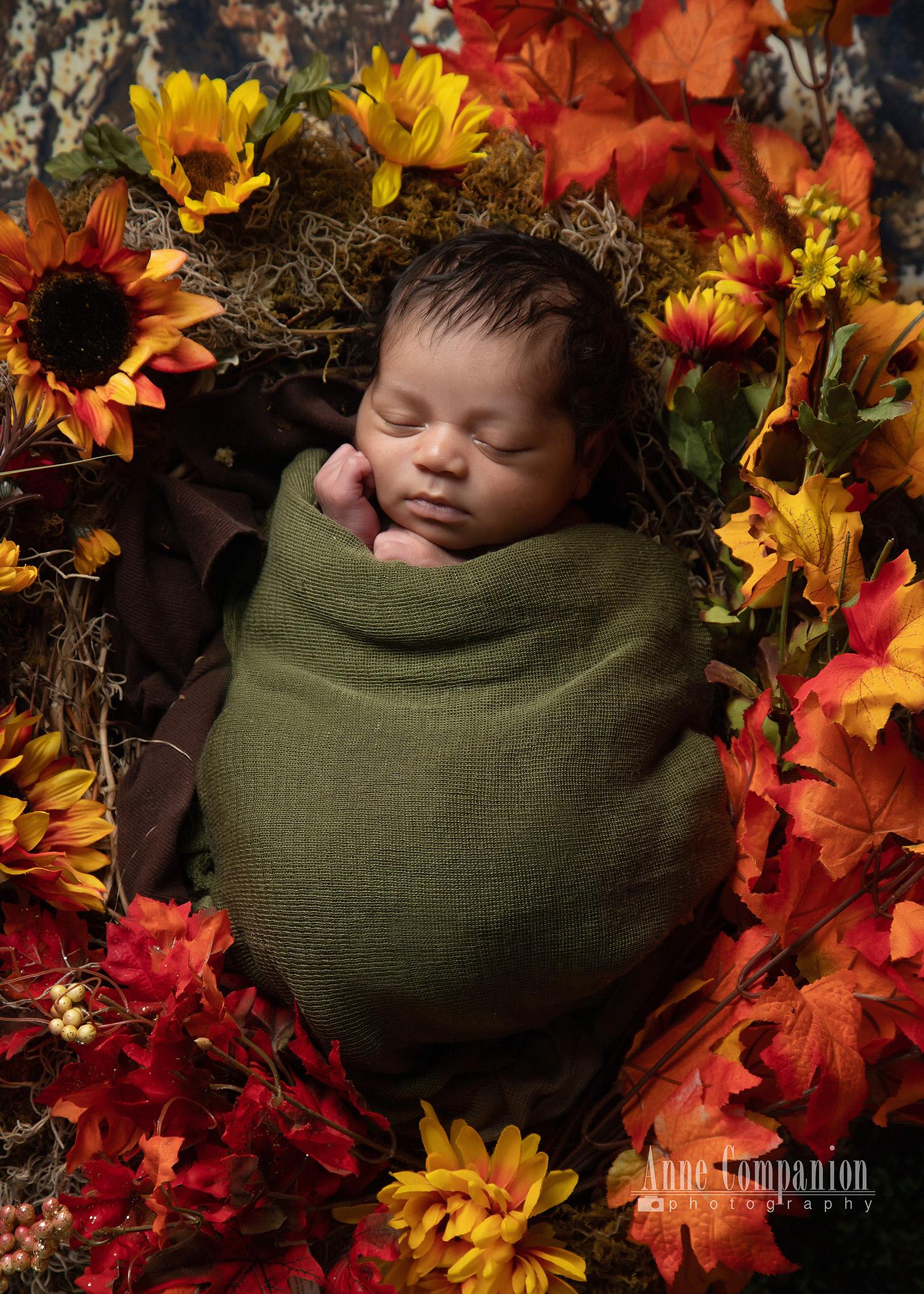 Newborn autumn baby Hampton Roads