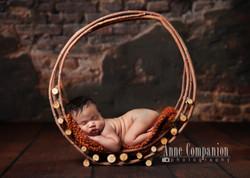 Newborn portraits Hampton Roads