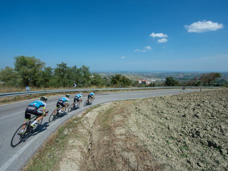 Chilli Consultancy sponsors Zappi Racing Team