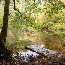 Fishpond-Wood-Jetty-Autumn-Square-1024x1