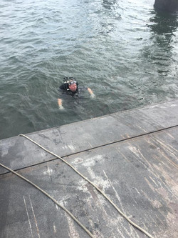 ferry diving