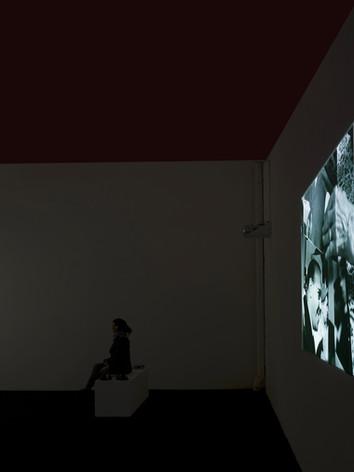 Gardienne d'images, 2010