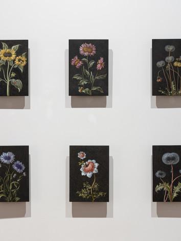 Future Herbarium, 2020