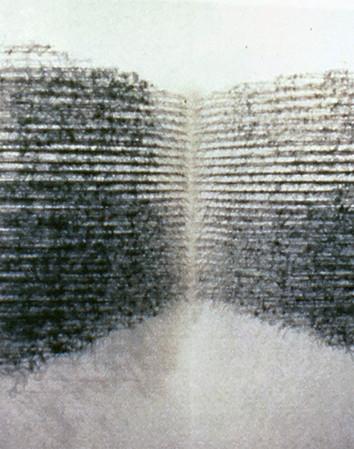 "Icholi Hauperyre L(10), (21)C , 1997 by Brigitte NaHoN. Fil, pins. Exposition ""Thread"" à la Cristinerose Gallery, New York City, 1997."