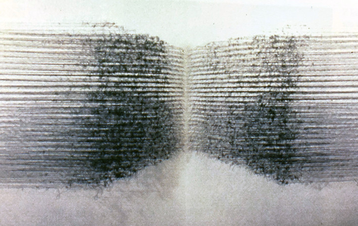 "Icholi Hauperyre L(10), (21)C , 1997 by Brigitte NaHoN. Fil, pins. Exposition ""Thread"" à la Cristinerose Gallery, New York City, 1997."