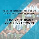 EL CUERPO HUMANO Y LAS COMPENSACIONES.pn
