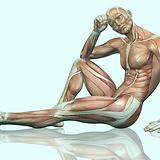 Copia de primer ley de la osteopatia_ el