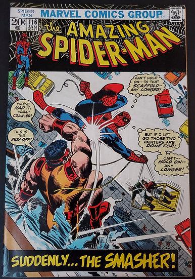 Amazing Spider-Man (Marvel) #116 VF+