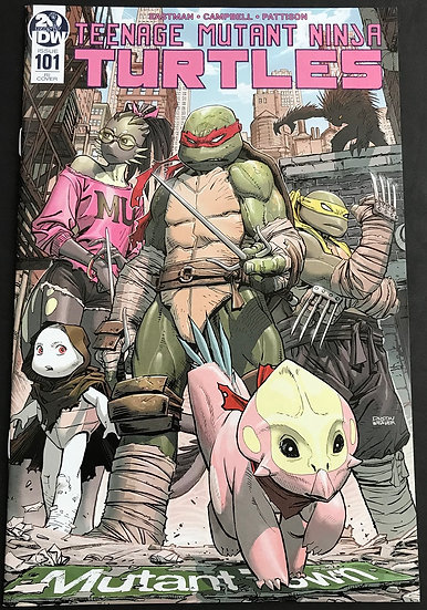 Teenage Mutant Ninja Turtles (2011 IDW) #101RI VF- Retailer Variant Cover