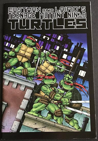Teenage Mutant Ninja Turtles(Mirage) #1  VF/NM [ Color Special]