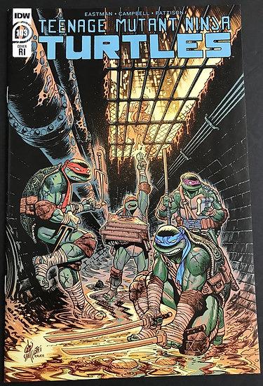 Teenage Mutant Ninja Turtles (2011 IDW) #103 NM [Variant Cover]